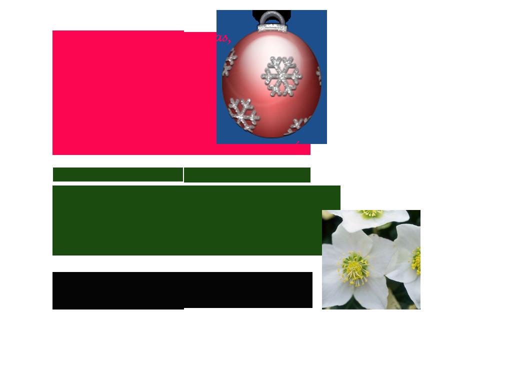 mensaje_navidad